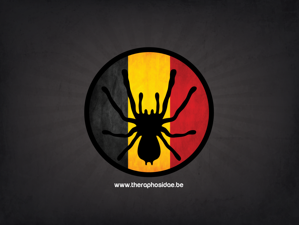 Tarantula wallpaper